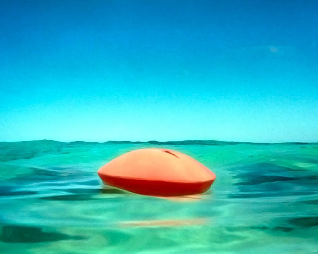 Urnas Marítimas Biodegradables
